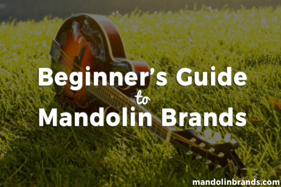 beginners guide to mandolin brands 2018